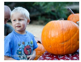 pumpkincarving-20