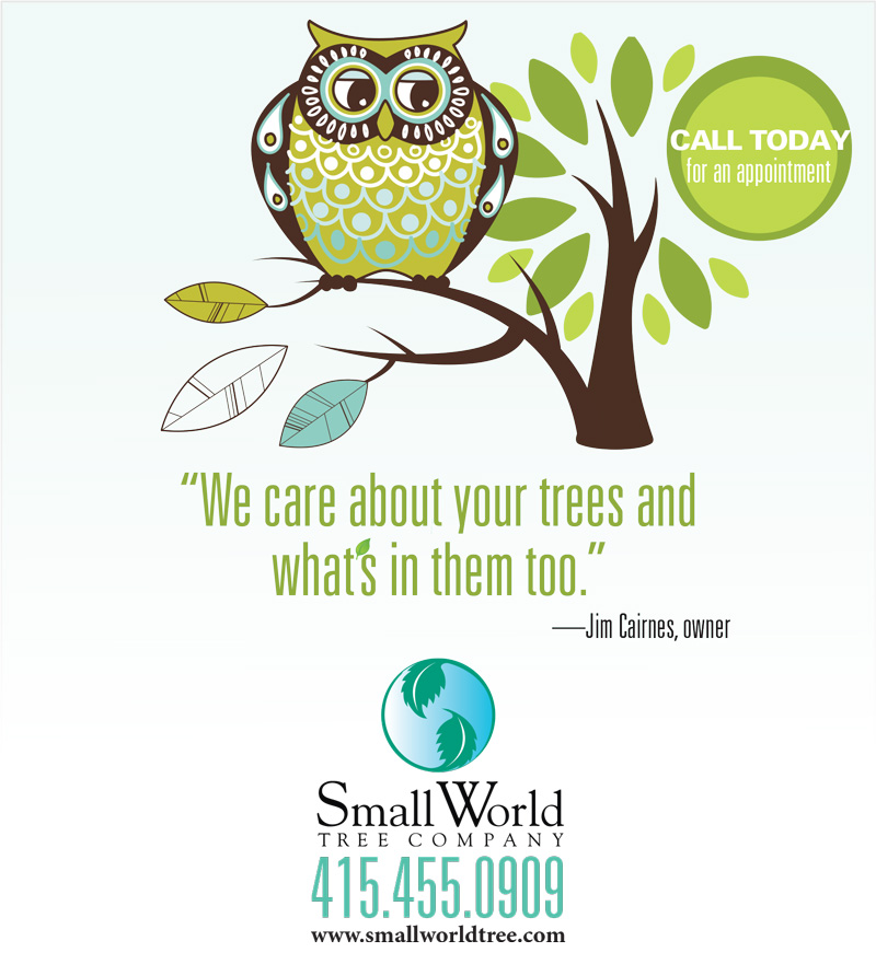 SmallWorldTreeCompany_061314_1-4s
